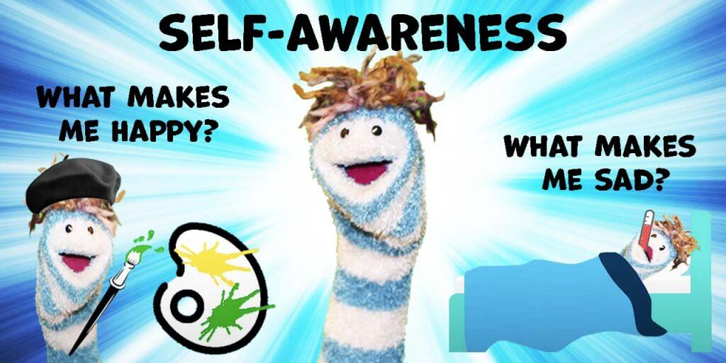 What is Self-Awareness?